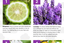 Essential Oils Research and DoTERRA / Learning about Essential Oils