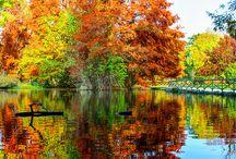 les beaux paysages