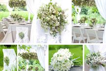 Our Franschhoek Wedding