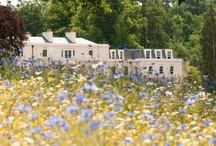 Luxury Travel: UK / The best luxury hotels and things to do in the UK