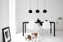 Dogs at home // Perros en casa / Cuando un perro, además, complementa una casa.