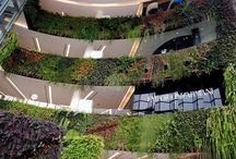 Vertical Gardens, Hanging Gardens, Green Walls / Create lush green walls with Woolly Pocket living wall planters. Grow herbs, feature walls and gardens vertically inside or outside and save space. Vertical gardens are a recent  revised craze, which are taking the world by storm. Gardens on museum walls, on the outside of buildings, in shopping Malls but its not a new going back to the days of Babylon.