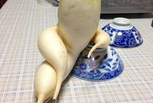 Vegetable Puns / Sometimes you just want a chuckle.