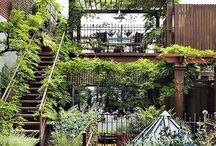 LA | Green Roofs