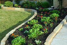 trädgårds idéer
