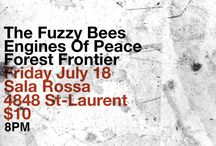 Event Posters / The Fuzzy Bees - Show Posters