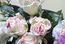 Roses by Cindy at her Country Home