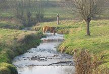 Gulpdal Zuid Limburg