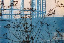 Cyanotypes Prints