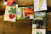 Simplified Seed Starting / A good garden needs a great start. Indoor or outdoor, it's all about the SEEDS!