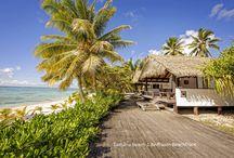 Tamanu Beach Images / Photos taken of Tamanu Beach
