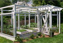 Trädgård - Odling