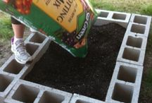 Raised Beds, Planters & Potting