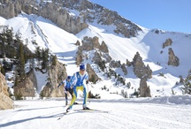 Ski Queyras / Ski alpin/de piste, ski de randonnée, rando raquette, ski de fond, itinéraires nordiques, course traversée du Queyras, course alpinisme du Grand Beal