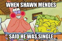 ShawnMendesIsBae