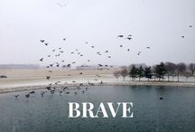 One Little Word 2014 / My One Little Word for 2014 is BRAVE