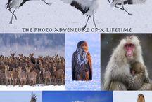 Hokkaido Photography Tour