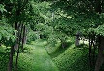 garden  and ideas - kert / kerti ötletek,szép kertek...