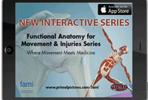 app-eteasers!! / The new interactive app series for the iPad, brought to you by the creators of FAMI, is designed to make learning your anatomy accessibly & fun. Check out these screenshots as teasers, & download the current releases today!