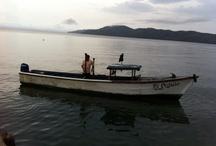 Gobernadora Island, Panama