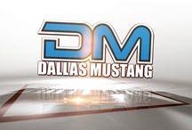 Step Into Dallas Mustang...