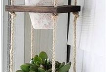 Home Plant Decor