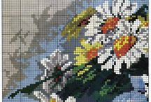 kvety-viragok-flowers 2