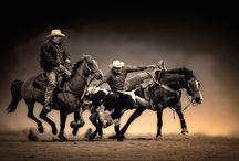 Horses / by Susie Blackmon