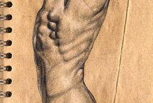 Anatomi Çizimi