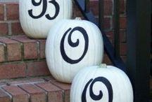 Pumpkin time!!