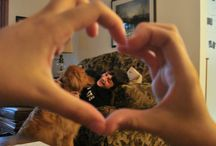 Family and Pets / Sharing love between pets and their owners