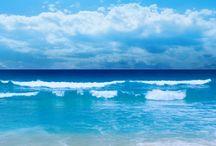Sea, Sand & Shells / by Jennifer Braun