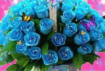 Gif modré růže