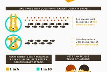 Infographics About Pets / by Kimberly Gauthier