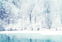 A ❅ winter wonderland ❅ / by Kat