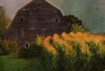 Barns / Barns, farm houses, etc. / by Rae Ann Kressin