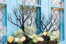 Window Boxes for All Seasons