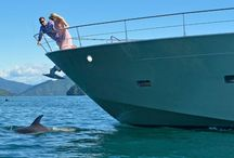 Swim With the Tonga Humpback Whales / Swim with the Tonga humpback whales on this unforgettable journey from Ker & Downey pairing private luxury aboard the MV Tarquin with land and sea excursions.