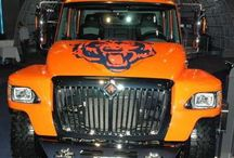 Football Fanatic / The Bears rule the world --- and other teams too / by Lisa Little