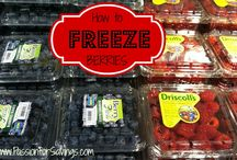 Freezing Food / by Michelle Barrett