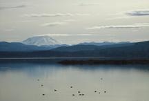 Silver Lake WA - Near Mt St Helens