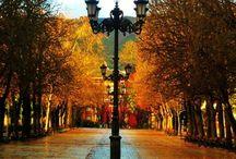 Sweet Fall <3