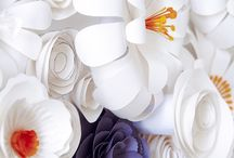 Paper flower walls / Many paper flower walls