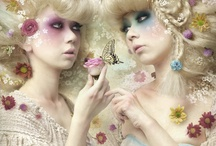 Fairies and Dolls