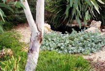bushland gardens