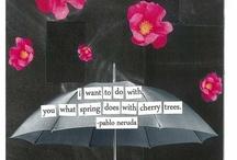 citation & poèmes