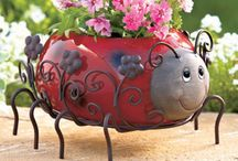 Outdoor Decor / Making the outside of your home pretty and welcoming