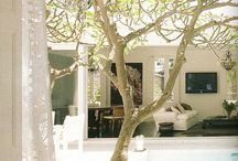 House ideas/Courtyard