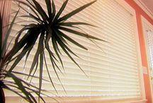 Homekeeping / by HSA Home Warranty