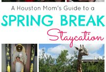 Local Stuff : Houston / by Vickie Palmer